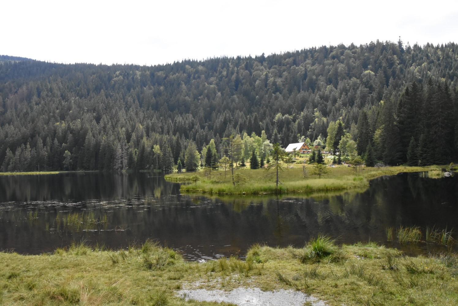 Arbersee